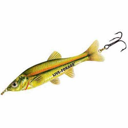 Northland Tackle Fish Fry Minnow Spoon, 1/4 oz