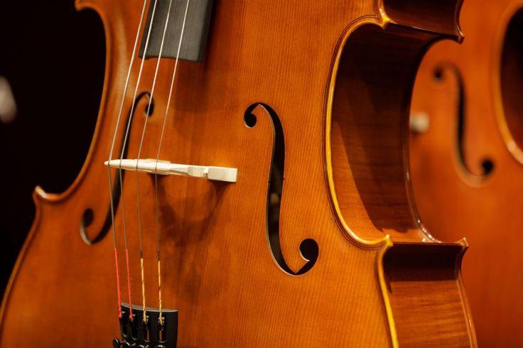 【僕のサン=サーンス】#03 チェロ試奏から購入へ。楽器店へGO!(後編) - Funmee!![ファンミ―]