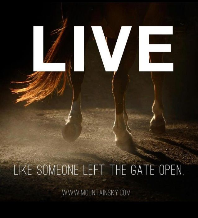 Live, like someone left the gate open!