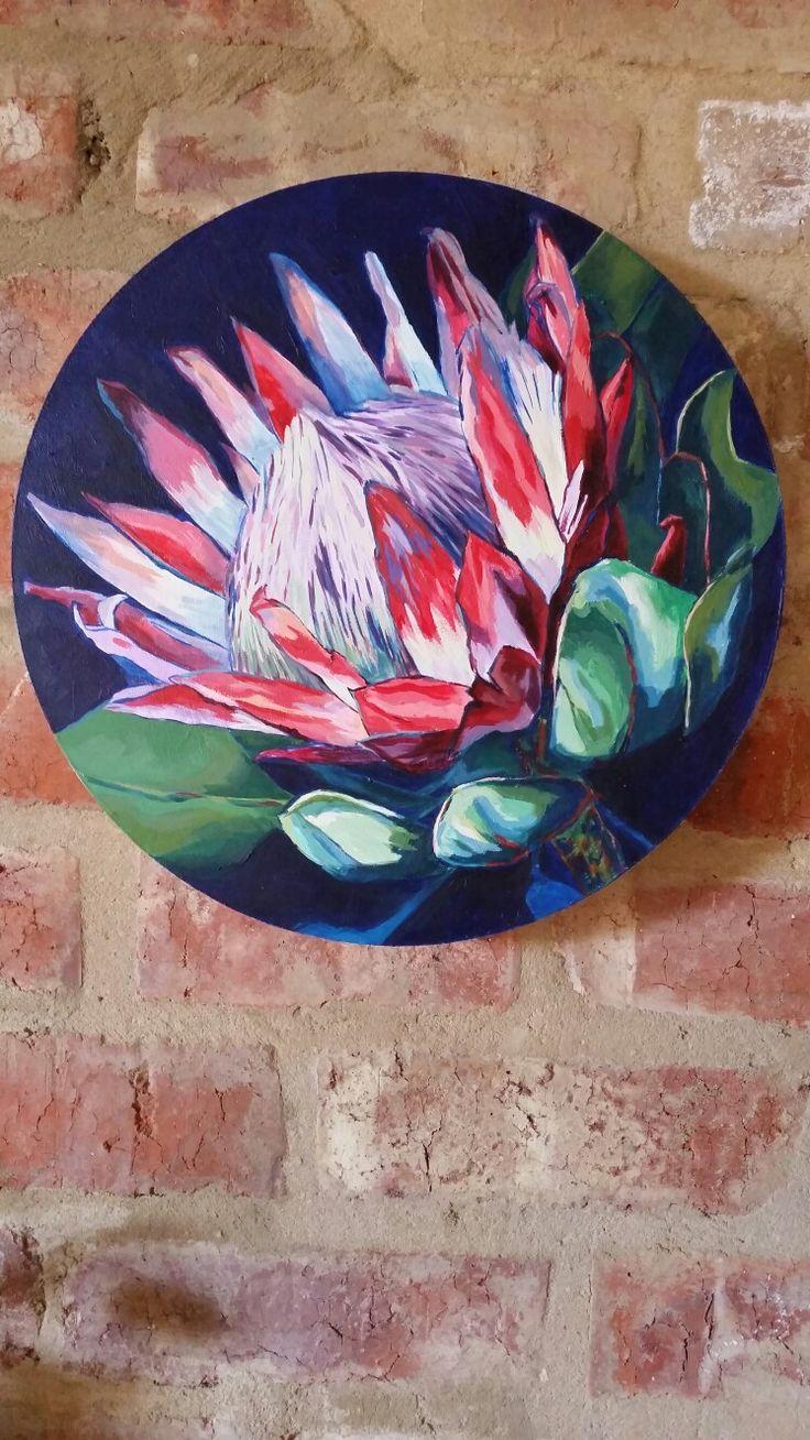 Protea in Acrylic on board by Natasha Pretorius