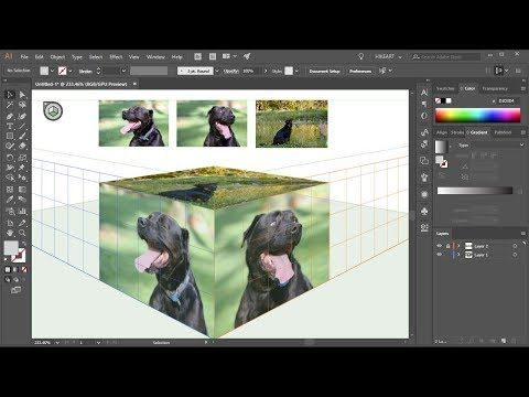 How to Apply Photos to the Perspective Grid Planes in Adobe Illustrator - YouTube