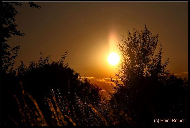 Einfach nur still geniesen  (Sonnenuntergang Buchhügel)