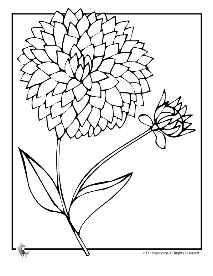 Coloring Pages Of Purple Flowers Book top coloring pages for