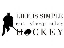 eat - sleep - play hockey