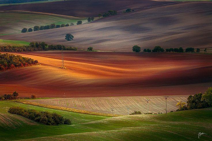 Moravian Fields by Janek Sedlar