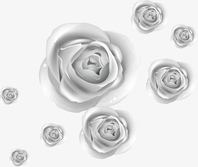 الفضة الورود الورد المرسومة ناقلات المواد ورود Png وملف Psd للتحميل مجانا Silver Roses Abstract Artwork Artwork