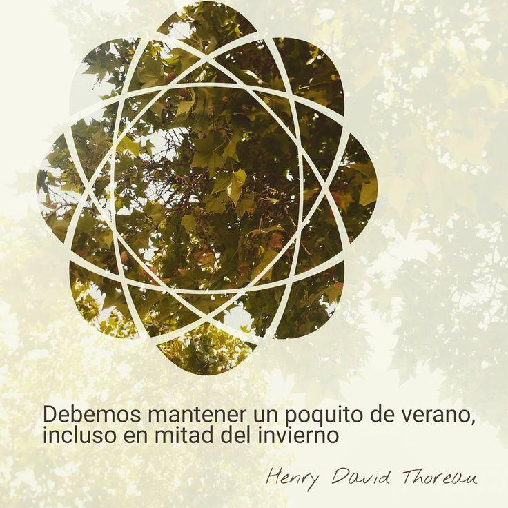 """""""Debemos mantener un poquito de verano, incluso en mitad del invierno"""" Henry David Thoreau. Que no se nos olvide nunca llevar los rayos del sol dentro del corazón.  #verano #summer #cielo #sky #árbol #trees #symbols #figuras #citas #frases #quotes #esperanza #hope #inspiración #inspirational #afternoon #positive"""