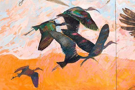 Wild Cries Wild Wings of Wetland and Swamp, John Wolseley