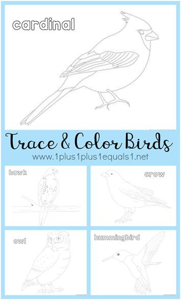 Bird Trace and Color Printables - 1+1+1=1