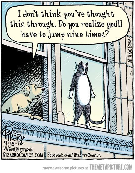 I don't think you thought it through… | funny | Pinterest | Funny, Humor and Funny animals