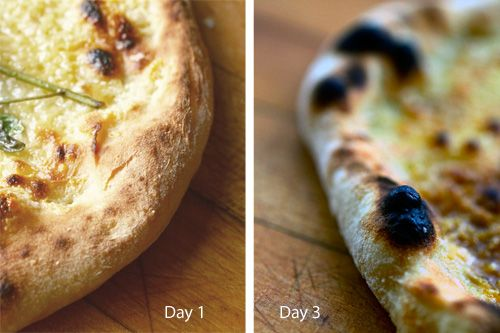 The Pizza Lab: How Long Should I Let My Dough Cold Ferment ...