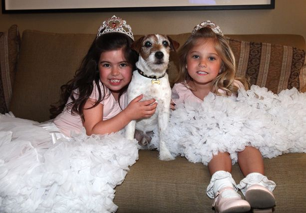 In LOVE with these little girls, and this little dog!! Sophia Grace
