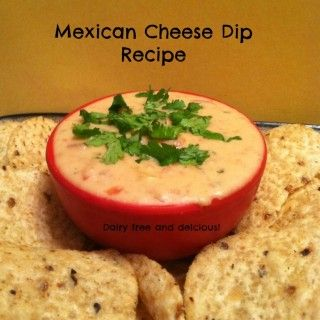 Mexican Cheese Dip Recipe   Adventures in Mindful Living