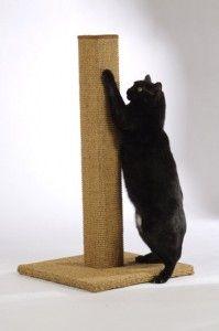 DIY scratching post. MUST MAKE!