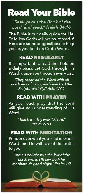 """Daily Reminder to self: Read Your Bible. Study to show thyself approved unto God … rightly dividing the word of truth."""" 2 Timothy 2:15"""