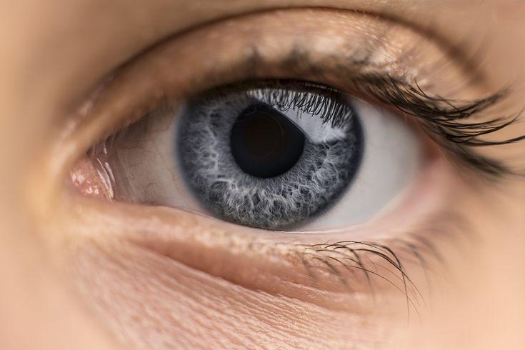 https://flic.kr/p/23ZgcfA | Timi's eye