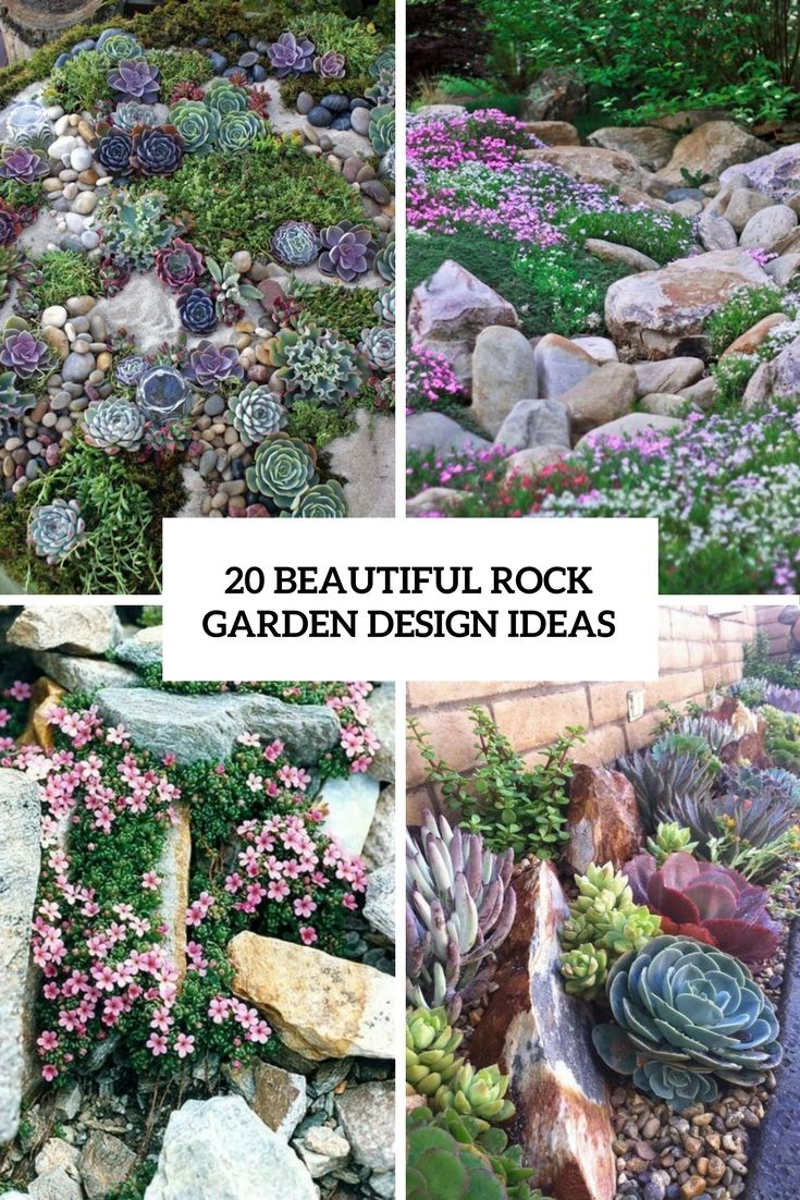 20 Beautiful Rock Garden Design Ideas