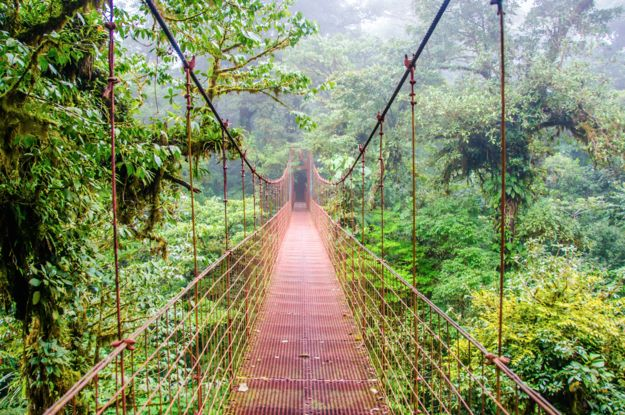 2. And it also has beautiful cloud forests … | 25 Reasons A Trip To Costa Rica Could Actually Change Your Life