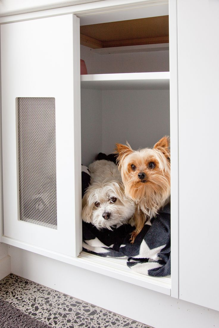Pampered Pooches. Pets are often a part of families and therefore part of a home. These lucky pooches were top of mind when a purpose designed sleeping space was created for them, with the idea of providing a quiet space where they wouldn't be concerned by any loud noises from the surrounding rural area.