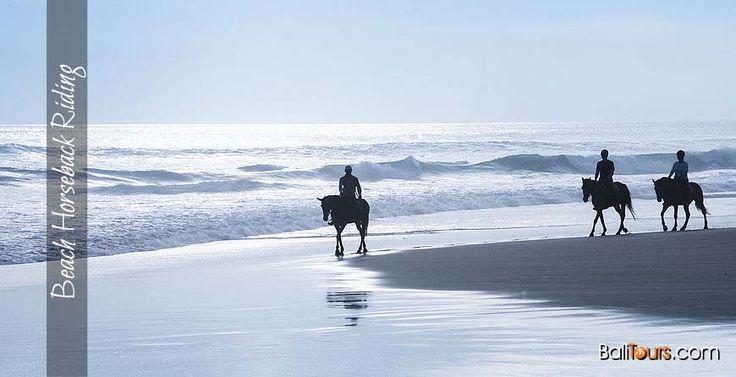 Beach-Horseback-Riding