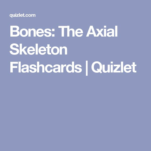 Bones: The Axial Skeleton Flashcards | Quizlet