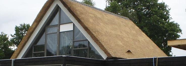 Rieten dak en glazen pui droomhuis pinterest - Glazen dak dak glijdende ...