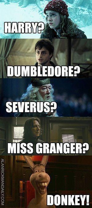 harry potter funny, Donkey just HAS to be in the conversation. xD