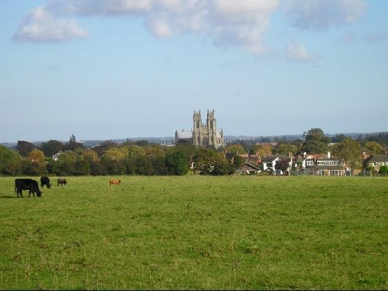 View of the Minster from the Westwood