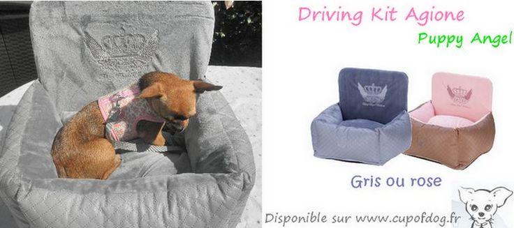 Siège auto chien driving kit Agione Puppy Angel https://www.cupofdog.fr/sac-transport-chihuahua-petit-chien-xsl-351.html