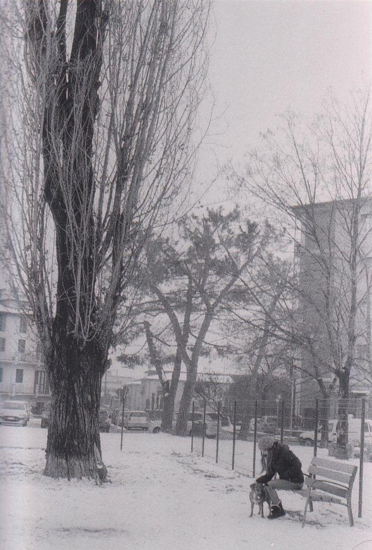 (Inverno 2011)