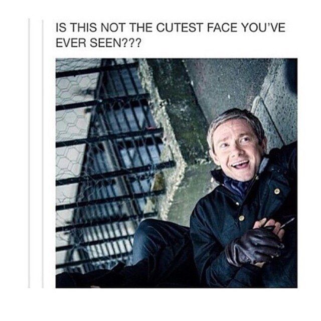 I don't know how MartinFreeman can be so cute #Sherlock cast