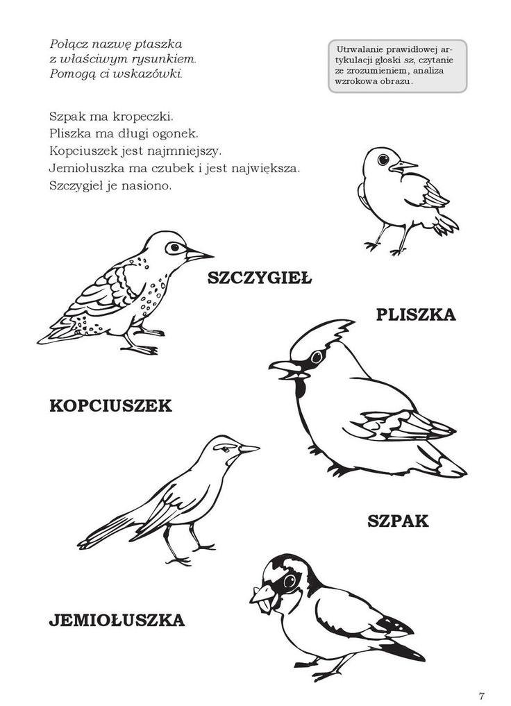#ClippedOnIssuu from MÓWIĘ! – Wierszyki i zabawy logopedyczne utrwalające prawidłową wymowę głosek sz, ż (rz), cz, dż