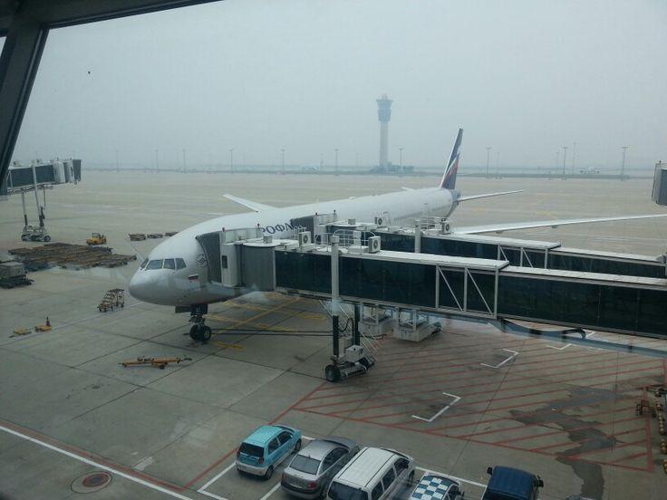 Aeroflot SU251/20130809 @- Incheon  Airport