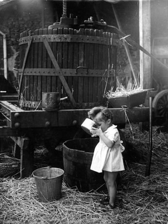 Le jus de pomme de Saint Sauvant, 1947 • Robert Doisneau