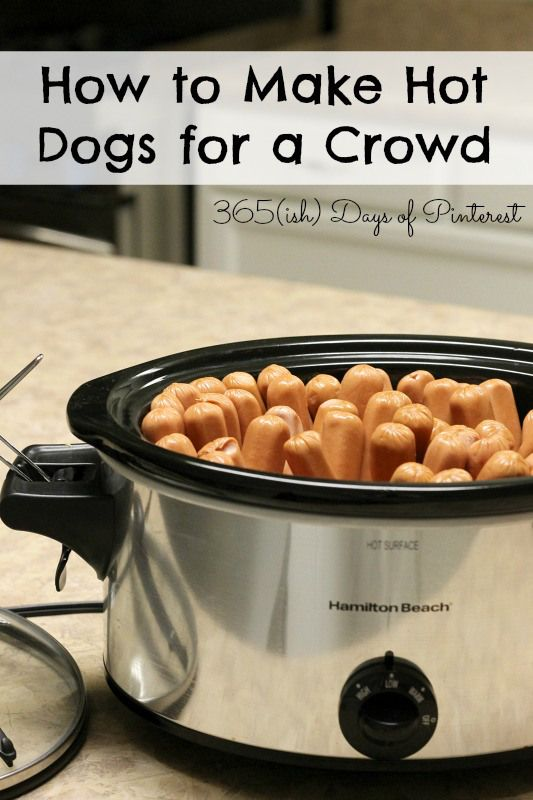 How To shoes for Dogs Dogs  buy Crowd and asics Cook How Hot a uk Cook Hot   Dogs to running