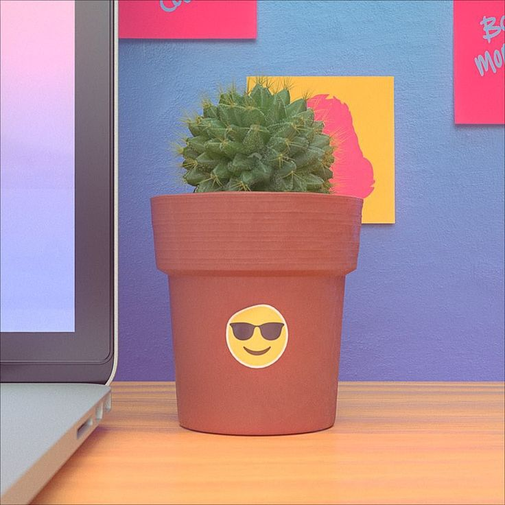 Have a #succulent day! :) . . . #smiley #sticker #potplant #redshift #mograph #productshot #styleframe #hdrilink #progressbeforeperfection #rendering #dof #c4d #3d #cg #cinema4d #insta3d #fa_hypnotic #motiondesign #design #thegraphicspr0ject #digitalart #cgaexcellence #lucidscreen #illmatic_features #thednalife #mdcommunity #rsa_graphics #artstagram
