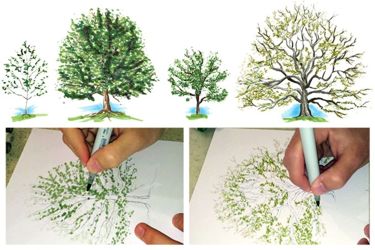 Creating beautiful trees with Copic markers is easier than you think. In this blog and series of videos, Randy Hunter will show you how he uses multiliners and Copic markers to produce Oak and Maple trees.