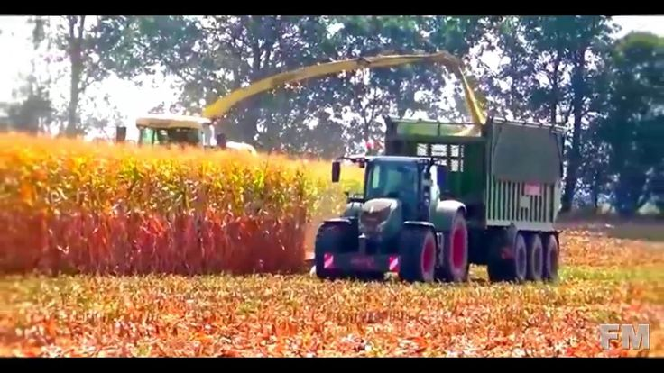 Corn Harvest in England 2016. !FM!.