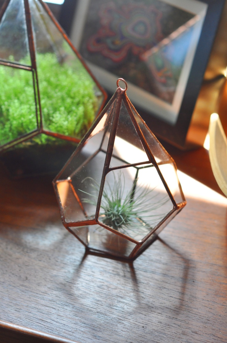 Hanging Teardrop Glass Terrarium for air plant by ABJglassworks