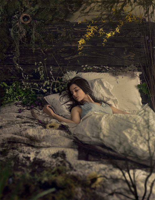 Dreaming of Spring by Amelia Fletcher, via Flickr. I wish i could have the same bed <3