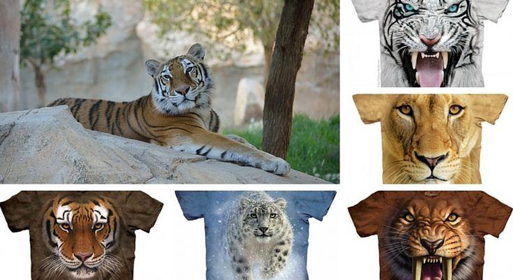 Tricourile cu feline, piese vestimentare care nu trebuie sa iti lipseasca din garderoba