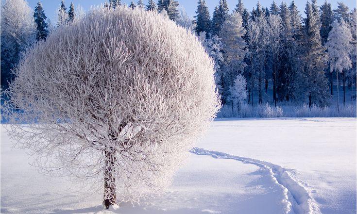all-images.net/... Wallpaper iphone Winter-250 iPhone X Wallpaper 858920960161740911 2