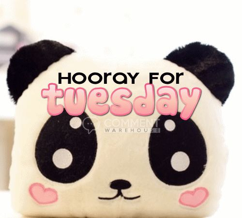 Hooray for Tuesday | Tuesday Graphics Pics Images Quotes Comments Greetings Happy Tuesday Hello Tuesday Nice Tuesday Beautiful Day Wonderful Blessed Panda