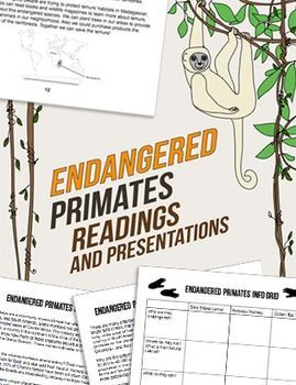silky sifaka essay Below is an essay on primates from anti essays, your source for research papers, essays, and term paper examples  silky sifaka lemur, the mouse lemur, and so .