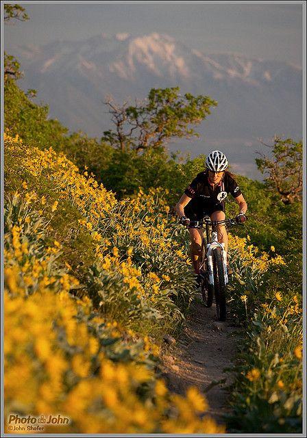 Spring Mountain Biking, above Orem, Utah