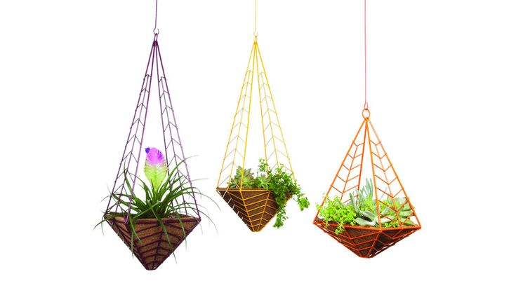 Colorful wire frames hanging palm pot creative for indoor #hangingpots