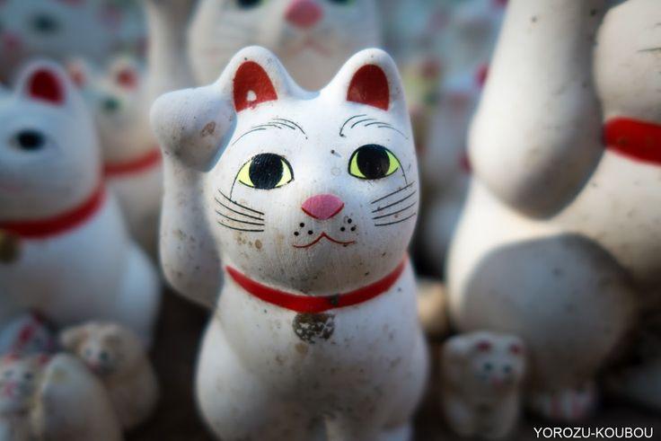 2016 : 豪徳寺 まねき猫 #15