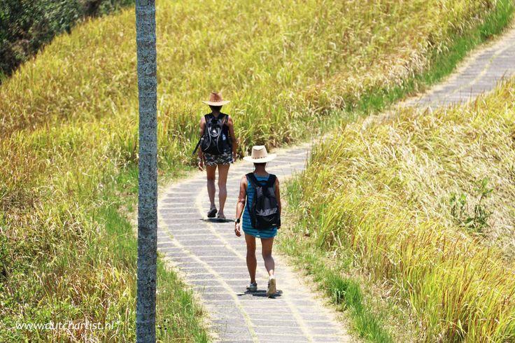 Wandelen met Emile in de heuvels van Ubud..Ook naar Bali en met Emile op stap dan email: emilesvv@hotmail.com