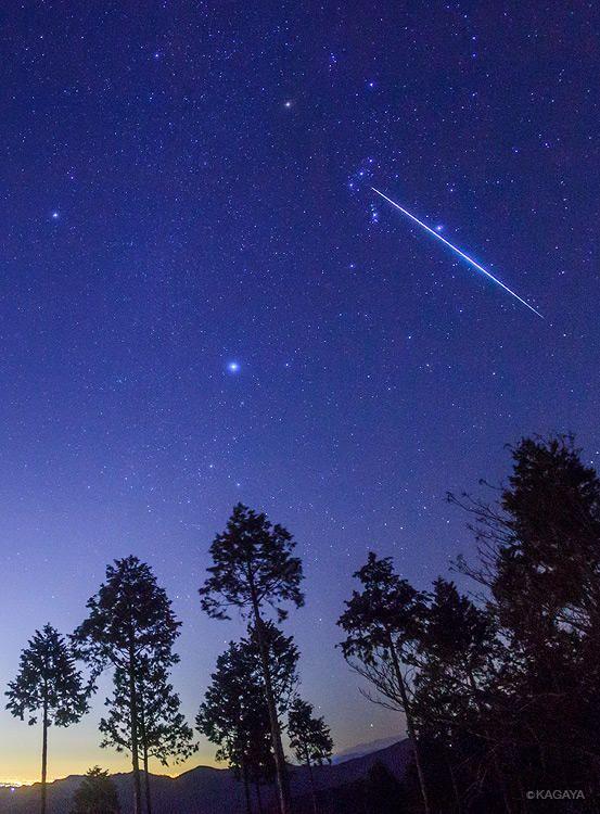 Twitter / KAGAYA_11949: 今撮影したオリオンを貫くふたご座流星群の大きな流れ星です。 ...