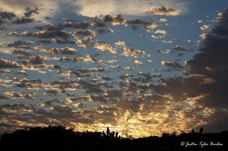Sunrise on Amakhala Game Reserve. {Photographed by: Justin Barlow}. #amakhala #sunset #safari